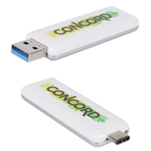 Type C USB Flash Drive with logo print